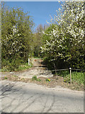 TM2971 : Entrance to Rows Hill by Geographer