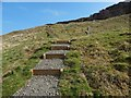 NS4376 : Lang Craigs Woodland: ascending path with steps by Lairich Rig
