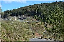 SH8010 : Forestry track into Cwm Gerwyn by Nigel Brown