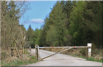 SE8094 : Gated track from Brown Howe Road by Pauline E