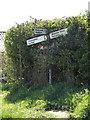 TM2580 : Roadsign on Mill Lane by Adrian Cable