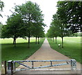 ST1677 : NE along a tree-lined path through Pontcanna Fields, Cardiff by Jaggery
