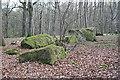 NJ8502 : Binghill Recumbent Stone Circle (5) by Anne Burgess