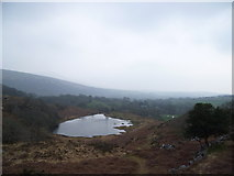 SH6129 : Little lake or llyn above Dinas camp site by Jeremy Bolwell