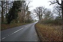 TG0705 : Norwich Rd by N Chadwick