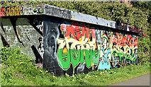 J3470 : Graffiti, Lagan towpath, Stranmillis, Belfast (April 2015) by Albert Bridge