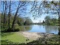 TQ5901 : Decoy Pond, Hampden Park by Paul Gillett