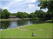 SK0573 : Lake at the Pavilion Gardens by Eirian Evans