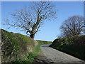 NZ2098 : Lane out of Eshott by JThomas