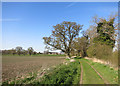 SU6996 : The Oxfordshire Way near Shirburn by Des Blenkinsopp