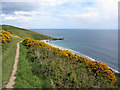SX0040 : South West Coast Path near Bow/Vault Beach by Gareth James