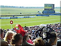 TL6262 : Near the winning line - Rowley Mile Racecourse, Newmarket by Richard Humphrey