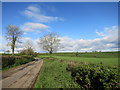 SX3474 : Green fields by  the road by Des Blenkinsopp