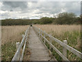 SS7884 : Boardwalk on the Wales Coast Path, Margam Moors by eswales