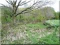 SE0723 : Sowerby Bridge FP079 (N10), Milner Royd Lane at the bend by Humphrey Bolton