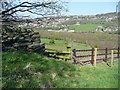 SE0723 : Sowerby Bridge FP079 (N22), stile from above by Humphrey Bolton