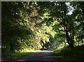 SK0872 : Lane at Cowdale by Derek Harper