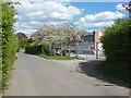 TQ0866 : Walton Lane, Desborough Island by Alan Hunt