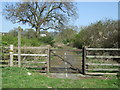 NZ0565 : Bridleway off the A69 by JThomas