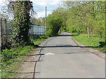 TQ0866 : Access Road, Desborough Island by Alan Hunt