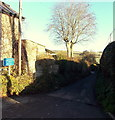 ST9429 : Unsuitable for wide vehicles, Duck Street, Tisbury by Jaggery