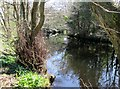 SE1664 : River  Nidd  from  the  Six  Dales  Trail by Martin Dawes