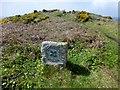 SW3425 : Approaching Maen Castle by Rude Health