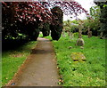 SO5624 : Churchyard path, Peterstow by Jaggery