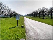 SU9675 : Windsor Great Park, The Long Walk South of Albert Road by David Dixon