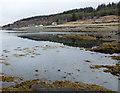 NM5126 : Shore of Loch Scridain by Trevor Littlewood