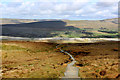 SD7475 : Path on Humphrey Bottom (1) by Chris Heaton