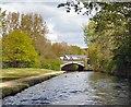 "SJ9398 : Peak Forest Canal Bridge ""A"" by Gerald England"