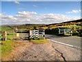 SD7738 : Cattle Grid on Clitheroe Road by David Dixon