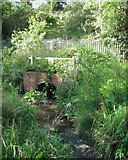 SP2865 : St John's Brook emerges from under the railway, Priory Park, Warwick by Robin Stott