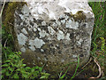 NY6405 : Boundary stone near Longdale (1) by Karl and Ali