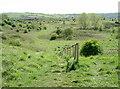 ST5968 : Hengrove Mounds by Neil Owen