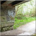 SJ9397 : Under Bridge #2 by Gerald England