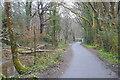 SX5157 : West Devon Way by N Chadwick