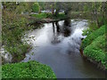 NZ2842 : Confluence of Old Durham Beck with the River Wear by Mick Garratt