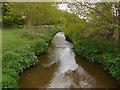 SU9861 : The Mill Bourne near Chobham by Alan Hunt