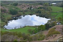 NY3404 : Loughrigg Tarn from above by Jim Barton