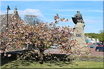 NX6851 : Cherry Blossom at War Memorial, Kirkcudbright by Billy McCrorie