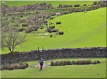 NY3404 : Walker and stile, Loughrigg Tarn by Jim Barton