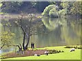 NY3404 : Two figures by Loughrigg Tarn by Jim Barton