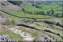 NY2906 : Path above Dungeon Ghyll by Jim Barton
