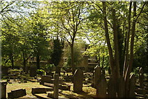 TQ2887 : View of the rear of flats on Lulot Gardens from Highgate Cemetery by Robert Lamb