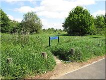 TQ2181 : Path from Braybrook Street into Wormwood Scrubs by David Hawgood