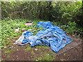 TQ2181 : Rough sleeper's campsite, Old Oak Common by David Hawgood