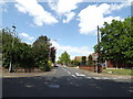 TM1180 : Louie's Lane, Diss by Adrian Cable