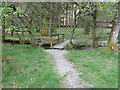NY3200 : Wooden footbridge on permissive path by Pauline E